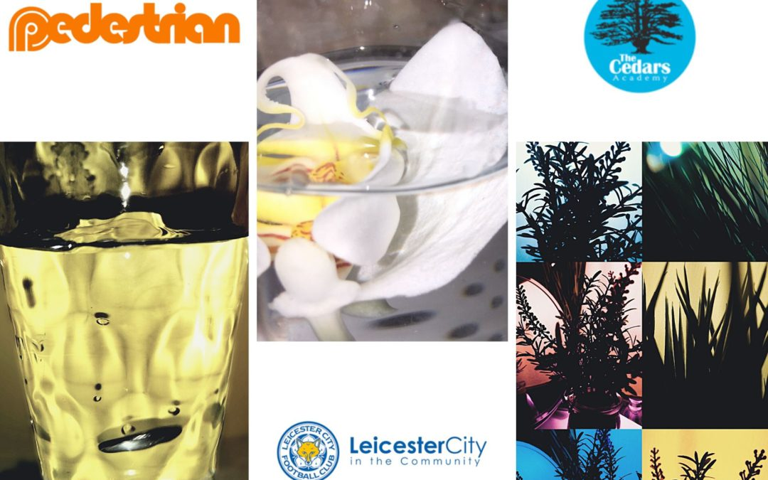 Orange Pedestrian Logo in top left corner above photo of a glass of water with yellow light behind. Leicester City in The community logo in the middle underneather a photo of a white orchid with yellow / red centre in a bowl of water. Cedars Adacemy logo in top right hand corner above photos of silhoutte plants. Red / blue & yellow backgrounds.